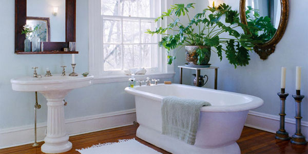 feng shui bathroom colors decorating feng shui bathroom plants for health wealth amp luck 23149