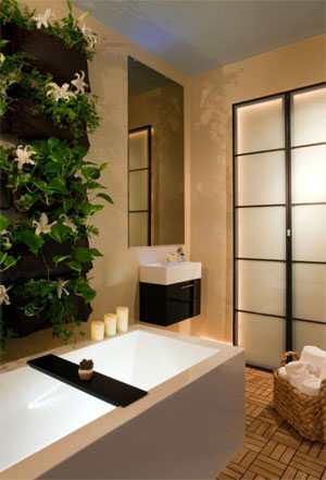 Mini At Home Spa With Feng Shui Design And Vertical Garden