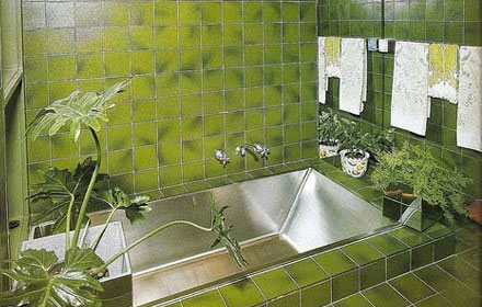 Feng Shui Bathroom Plants For Health Wealth Amp Luck